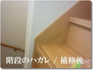 階段のハガレ / 補修後
